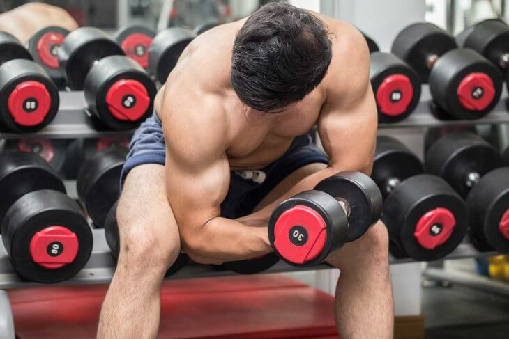 Bicep Concentration Curl