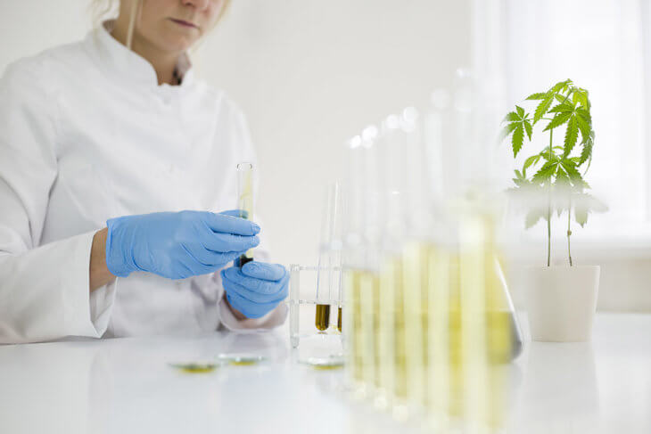 cbd lab extraction method