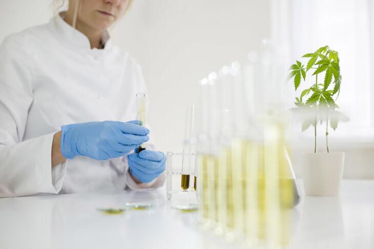 cbd lab extraction method