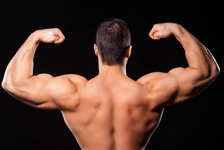 Getting Bigger Biceps