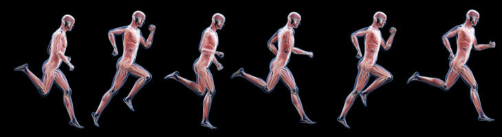 Running Strengthens Muscles